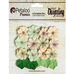 Petaloo - Darjeeling Collection - Floral Embellishments - Mini Daisies with Leaves - Pistachio