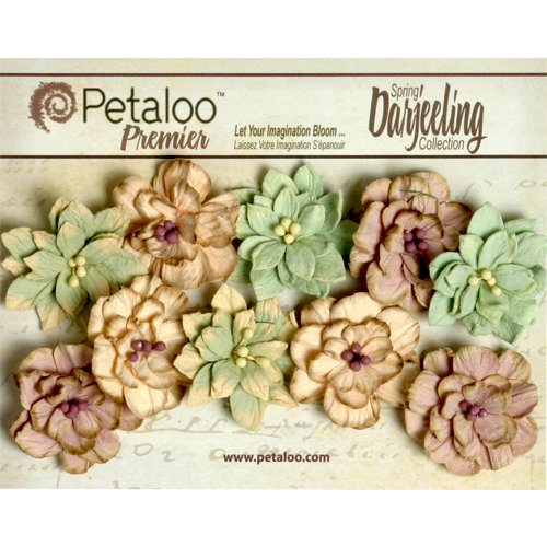 Petaloo - Darjeeling Collection - Floral Embellishments - Dahlias - Pistachio