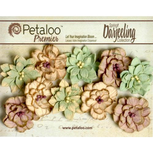 Petaloo - Darjeeling Collection - Floral Embellishments - Dahlias - Pistachio