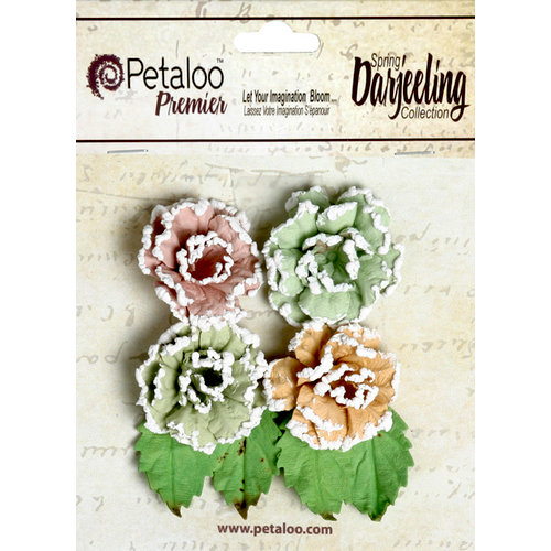 Petaloo - Darjeeling Collection - Floral Embellishments - Frosted Roses - Pistachio