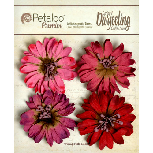 Petaloo - Darjeeling Collection - Floral Embellishments - Daisies - Red Raspberry