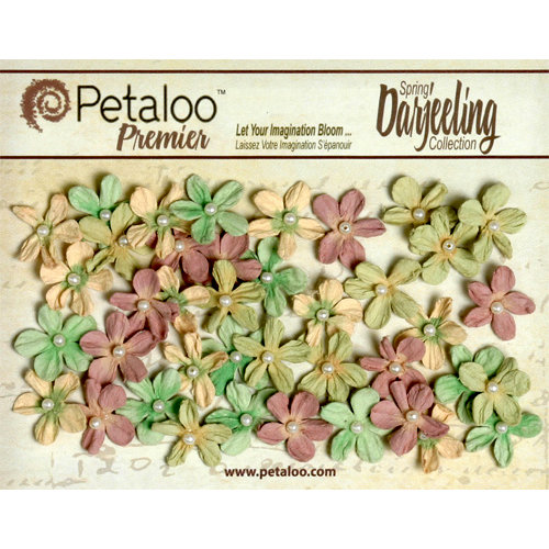 Petaloo - Darjeeling Collection - Floral Embellishments - Mini Pearl Daisies - Pistachio