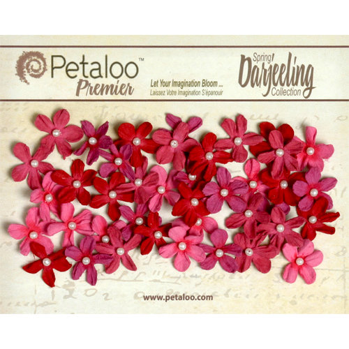 Petaloo - Darjeeling Collection - Floral Embellishments - Mini Pearl Daisies - Red Raspberry