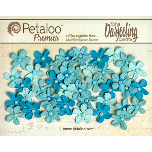 Petaloo - Darjeeling Collection - Floral Embellishments - Mini Pearl Daisies - Seaside