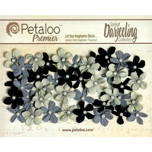 Petaloo - Darjeeling Collection - Floral Embellishments - Mini Pearl Daisies - Nightfall