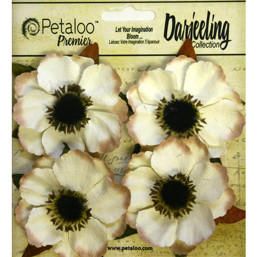 Petaloo - Darjeeling Collection - Floral Embellishments - Anenome - Cream