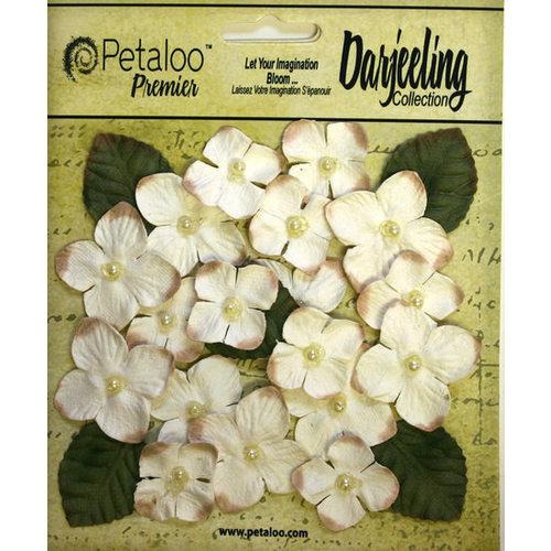 Petaloo - Darjeeling Collection - Floral Embellishments - Hydrangeas - Cream