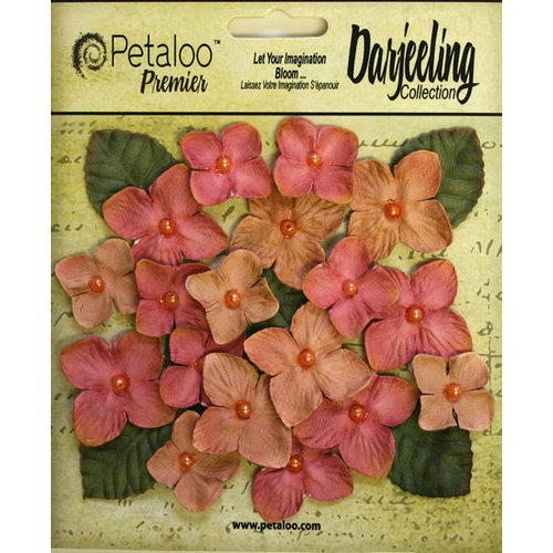 Petaloo - Darjeeling Collection - Floral Embellishments - Hydrangeas - Spice