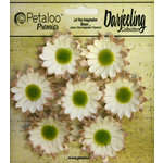 Petaloo - Darjeeling Collection - Floral Embellishments - Mini Daisy - Cream