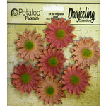 Petaloo - Darjeeling Collection - Floral Embellishments - Mini Daisy - Spice