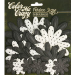 Petaloo - Color Me Crazy Collection - Black Chalkboard - Embossed Daisies