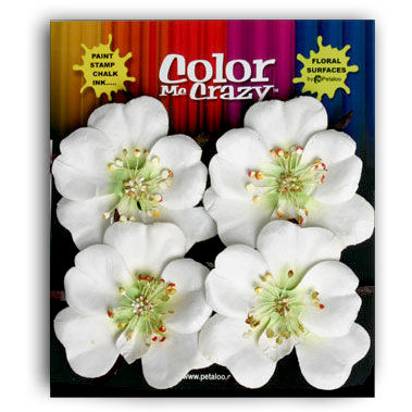 Petaloo - Color Me Crazy Collection - Mulberry Paper Flowers - Open Rose - White, CLEARANCE