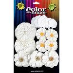 Petaloo - Color Me Crazy Collection - Silk Paper Flowers