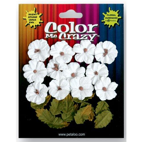 Petaloo - Color Me Crazy Collection - Darjeeling Flowers - Petites