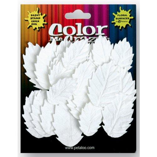 Petaloo - Color Me Crazy Collection - Darjeeling Flowers - Medium Leaves