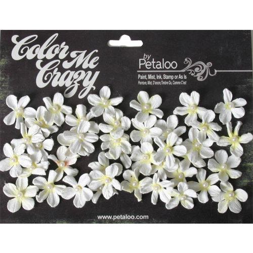 Petaloo - Color Me Crazy Collection - Mini Pearl Daisies
