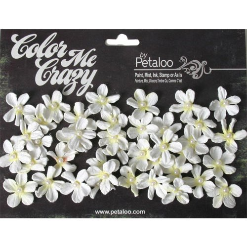 Petaloo - Color Me Crazy Collection - Mini Pearl Daisies