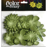 Petaloo - Color Me Crazy Collection - Mulberry Paper Flowers - Green