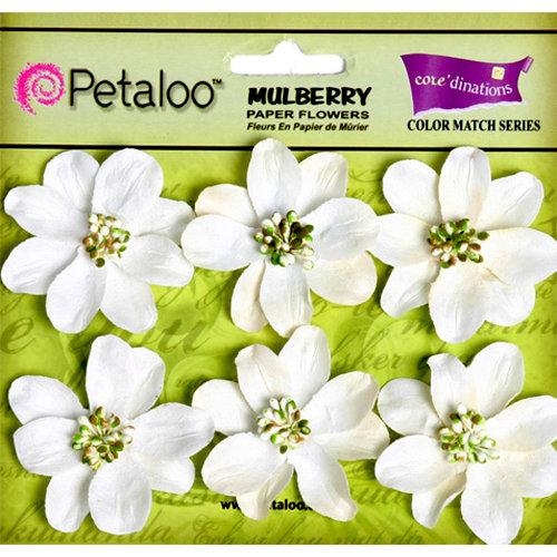 Petaloo - Flora Doodles Collection - Mulberry Flowers - Camelia - White