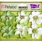 Petaloo - Flora Doodles Collection - Mulberry Flowers - Camelia - Mantis Green