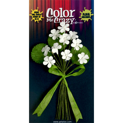 Petaloo - Color Me Crazy Collection - Flower Bouquets - Violets