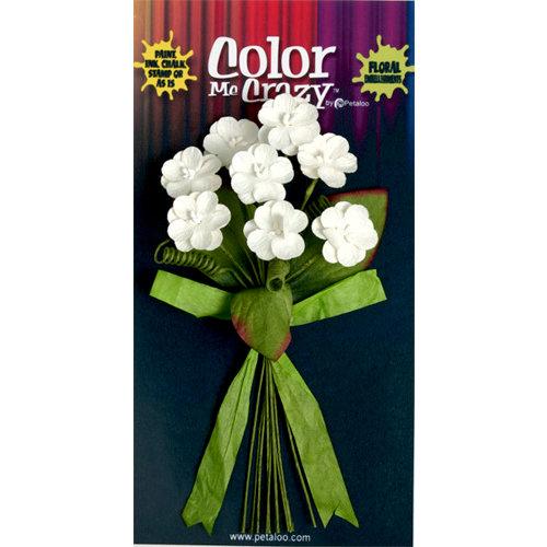Petaloo - Color Me Crazy Collection - Flower Bouquets - Wild Flowers