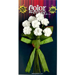 Petaloo - Color Me Crazy Collection - Flower Bouquets - Wild Flowers