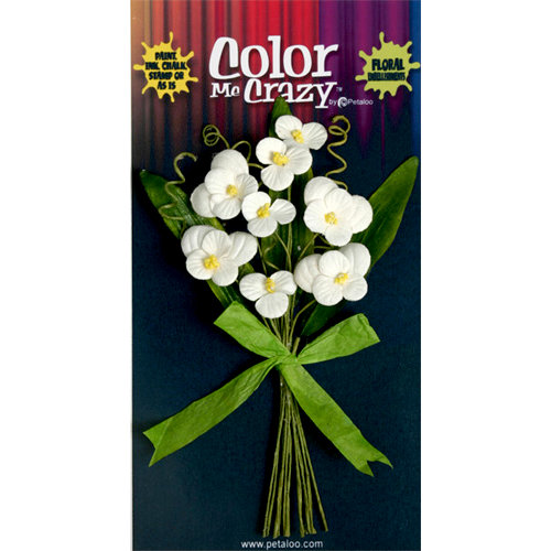 Petaloo - Color Me Crazy Collection - Flower Bouquets - Pansies