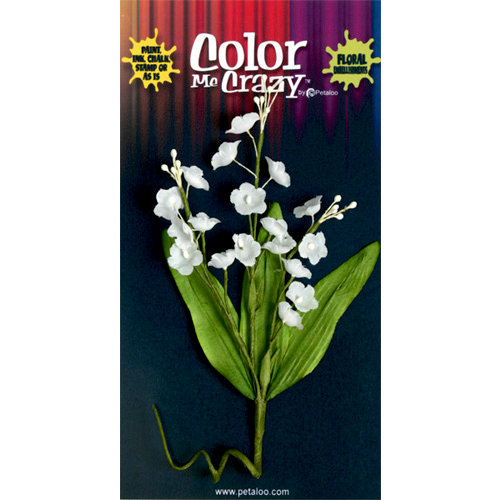 Petaloo - Color Me Crazy Collection - Flower Bouquets - Lily of the Valley