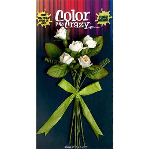 Petaloo - Color Me Crazy Collection - Flower Bouquets - Rosebuds