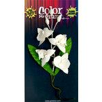 Petaloo - Color Me Crazy Collection - Orchid Spray - Phalaenopsis