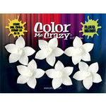 Petaloo - Color Me Crazy Collection - Orchids - Plumeria