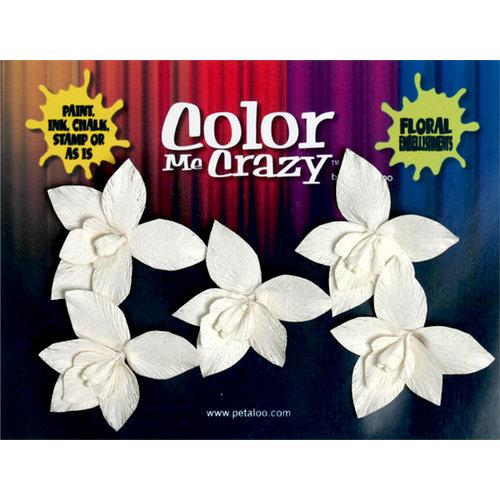 Petaloo - Color Me Crazy Collection - Orchids - Wild