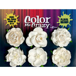 Petaloo - Color Me Crazy Collection - Mixed Floral Assortment