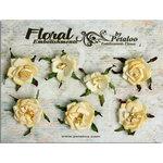 Petaloo - Canterbury Collection - Rose Blossoms - Cream