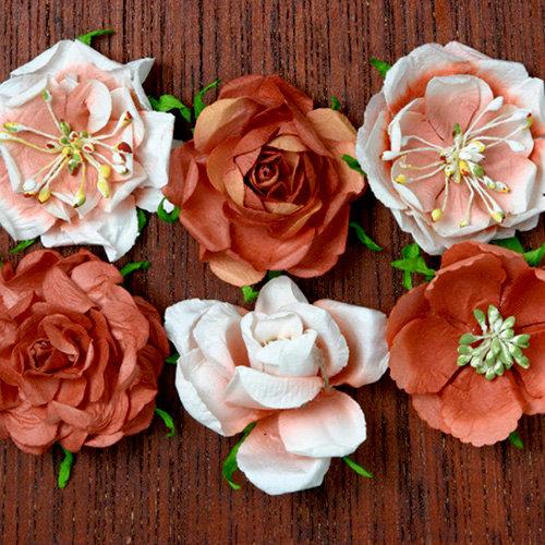 Petaloo - Canterbury Collection - Roses - Paprika