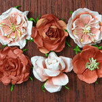 Petaloo - Canterbury Collection - Roses - Paprika
