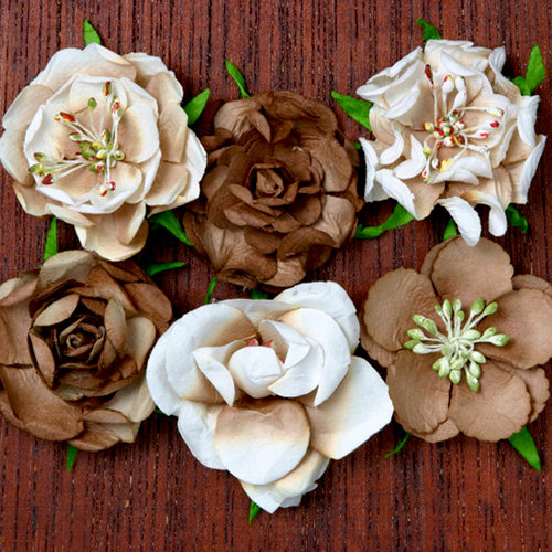Petaloo - Canterbury Collection - Roses - Brownie