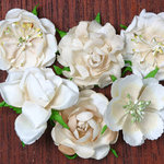Petaloo - Canterbury Collection - Roses - Vanilla