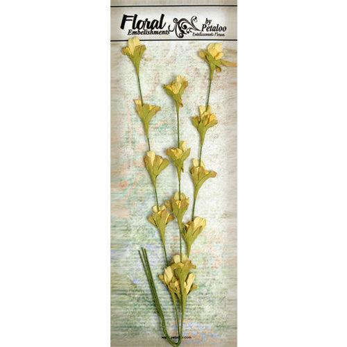 Petaloo - Canterbury Collection - Honeysuckle Vine - Yellow