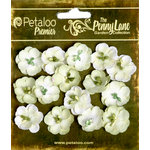 Petaloo - Penny Lane Collection - Floral Embellishments - Forget Me Nots - Mint