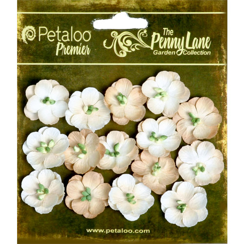 Petaloo - Penny Lane Collection - Floral Embellishments - Forget Me Nots - Vanilla