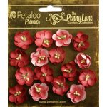 Petaloo - Penny Lane Collection - Floral Embellishments - Forget Me Nots - Antique Red