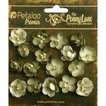 Petaloo - Penny Lane Collection - Floral Embellishments - Forget Me Nots - Antique Green