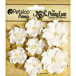 Petaloo - Penny Lane Collection - Floral Embellishments - Mini Wild Roses - White