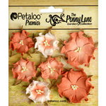 Petaloo - Penny Lane Collection - Floral Embellishments - Mini Wild Roses - Antique Peach
