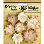 Petaloo - Penny Lane Collection - Floral Embellishments - Mini Wild Roses - Antique Beige