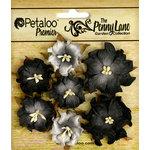 Petaloo - Penny Lane Collection - Floral Embellishments - Mini Wild Roses - Black