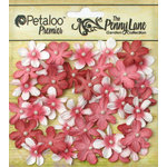 Petaloo - Penny Lane Collection - Floral Embellishments - Mini Daisy Petites - Antique Red