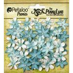 Petaloo - Penny Lane Collection - Floral Embellishments - Mini Daisy Petites - Robin Egg Blue